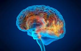 Ways To Reduce The Risk Of Dementia